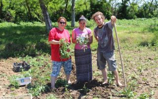 Soziale Arbeit Garten