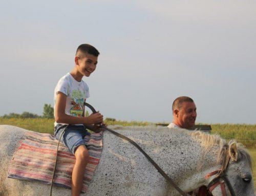 Reiten, Rennen, Braten – Ausflug mit dem Pferdefuhrwerk