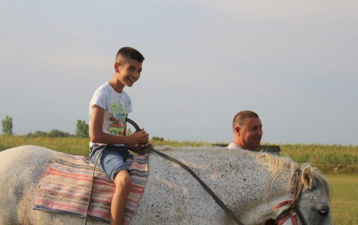 Pferd Kind