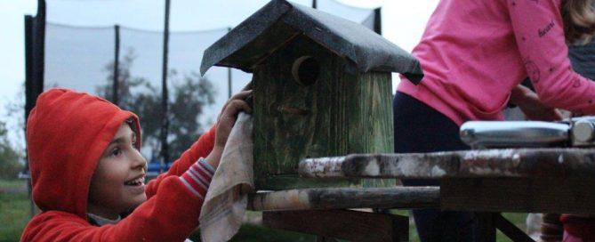 Vogelhaus bemalen